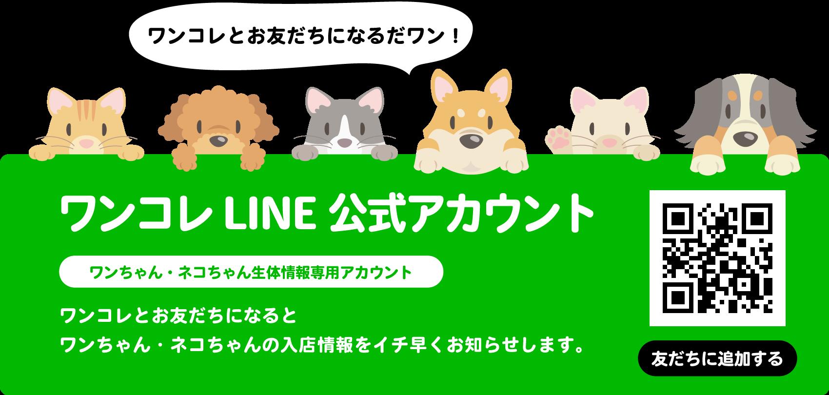 LINE公式アカウントお友だち募集中